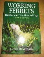 Working Ferrets By Jackie Drakeford