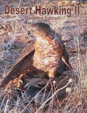 DESERT HAWKING II UPDATED EDITION
