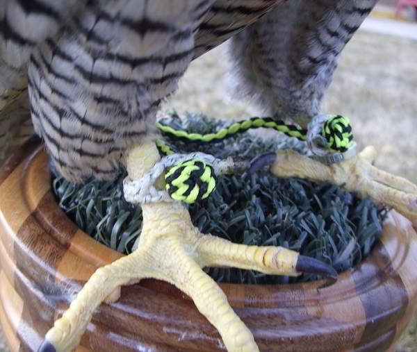 BRAIDED DACRON REMOVABLE ANKLETS COME IN SIZES TO FIT MOST BIRDS