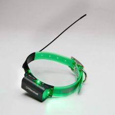Marshall High Power dog tracking collar Lighted
