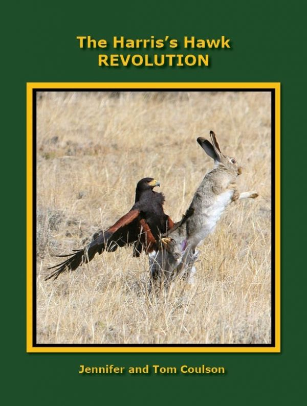 The Harris's Hawk Revolution
