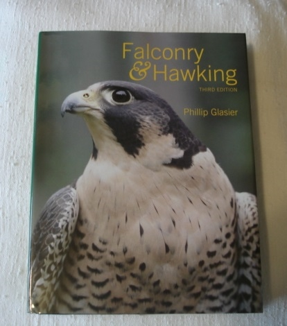 Falconry & Hawking. (Phillip Glasier)