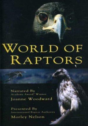 World Of Raptors