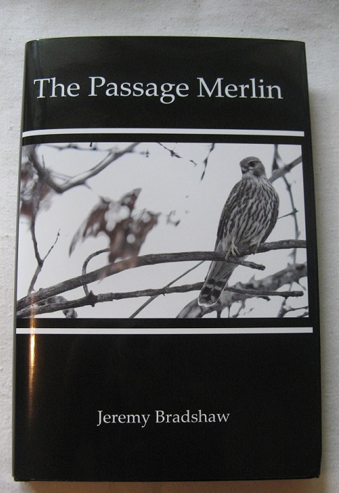 THE PASSAGE MERLIN BY, BY JEREMY BRADSHAW