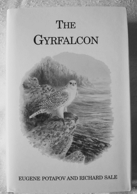 The Gyr Falcon