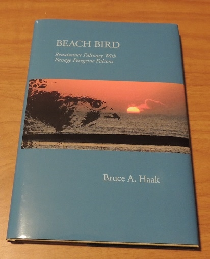 A new book, Beach Bird, By Bruce A. Haak