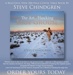 a - - The Art of Hawking Sage Grouse, by Steve Chindgren