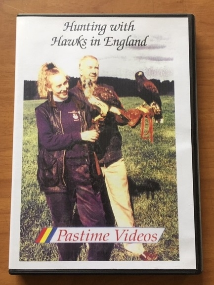 Hunting with Harris Hawks and Red tail hawks in England