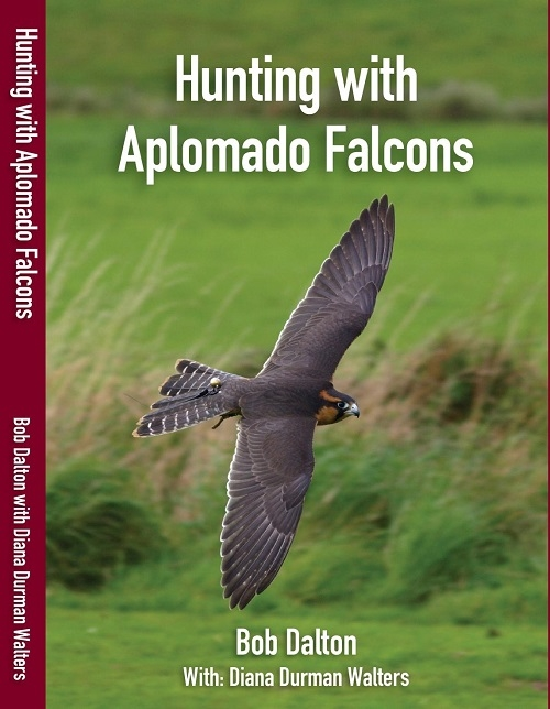 A- HUNTING WITH APLOMADO FALCONS - NEW REVISED EDITION 2019