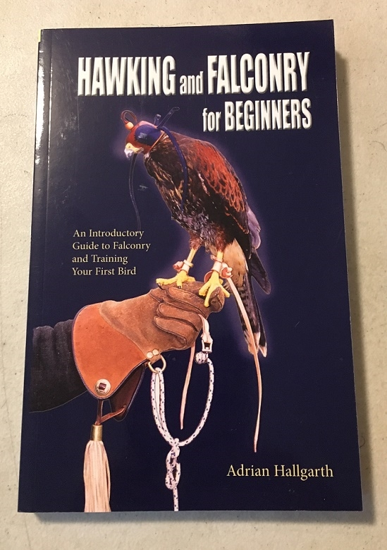 Hawking & Falconry For Beginners
