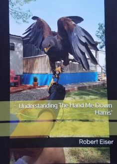 UNDERSTANDING THE HAND ME DOWN HARRIS' by Robert Eiser