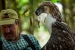 philippine-eagle-project-up-close