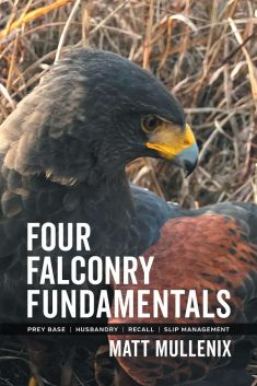 Picture of a falconry book.